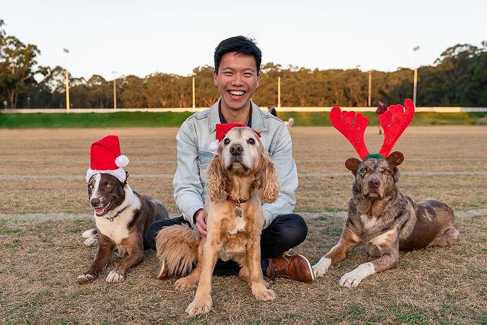 Sydney Dog Photographer Park in Lane Cove