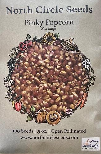 Pinky Popcorn - Zea mays