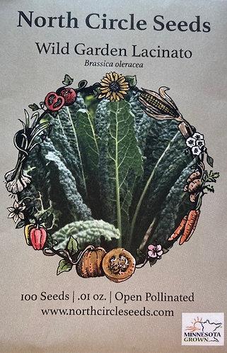 Wild Green Lacinato - Brassica oleracea