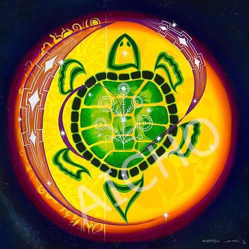 Celestial Turtle - Scott Hill