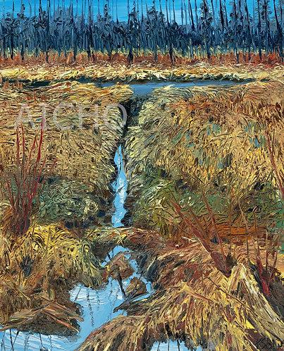 Beaver Pond - Karen Savage Blue