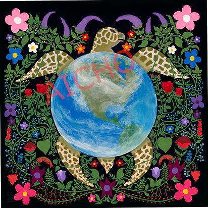 Brian Dow turtle.jpg