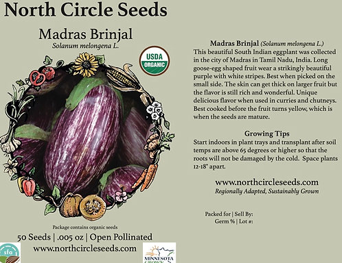Eggplant Madras Brinjal
