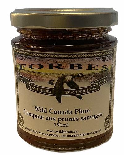 Wild Canada Plum