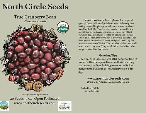 True Cranberry Bean