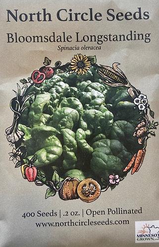 Bloomsdale Longstanding - Spinacia oleracea
