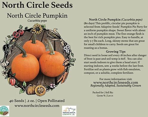 North Circle Pumpkin