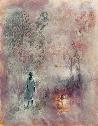 Reflections - Rodrigo Bello