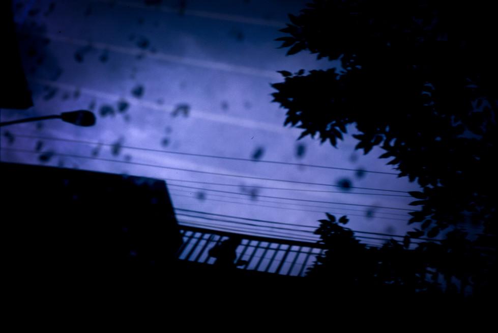 lcm_lens-8.jpg