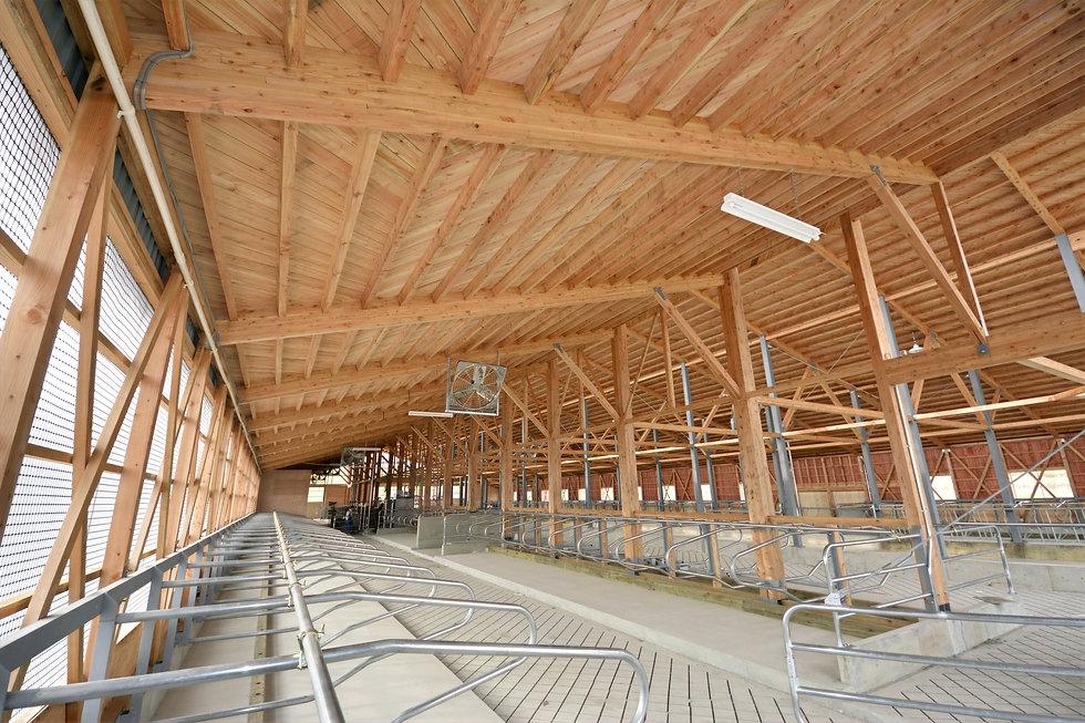 木造畜舎建築.jpg