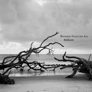 ''Rebloom'' by RFOA