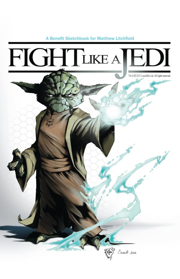 Fight Like A Jedi