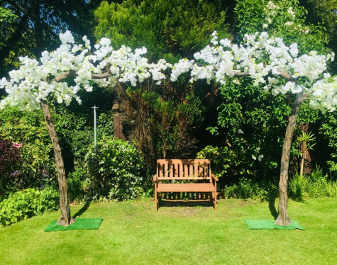 10ft Blossom Trees Event Hire   Chocolate Falls