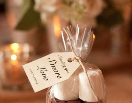 S'more Love Favours   Chocolate Falls