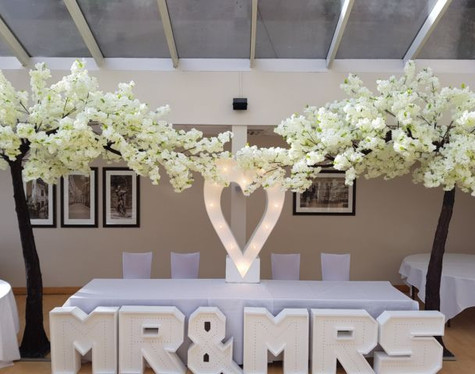 Canopy Trees 10ft Wedding Hire   Chocolate Falls