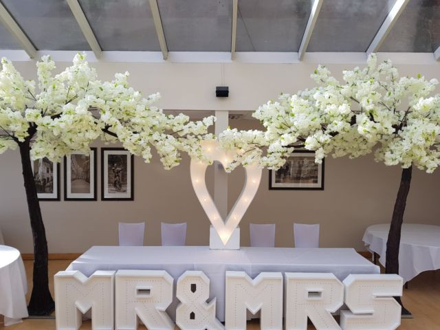 Canopy Trees 10ft Wedding Hire | Chocolate Falls