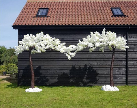 Wedding Ceremony Canopy Blossom Tree   Chocolate Falls