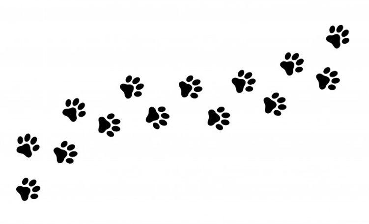 empreinte-patte-chat-chien-chiot-animal-