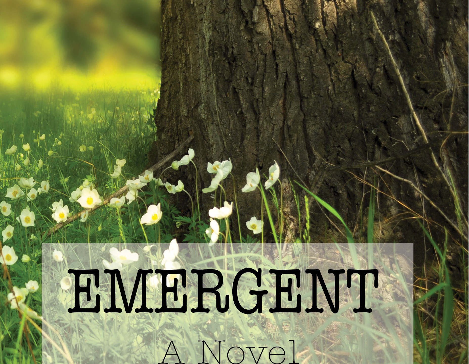 Emergent - 3