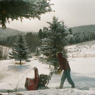 marc in montana