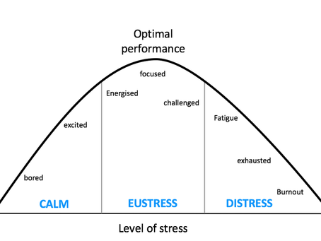 Good stress, bad stress- Know your body better
