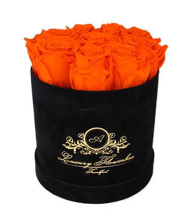 Plain Flowerbox Black Velvet M
