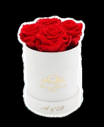 Velvet Flowerbox Weiß S Personalisiert