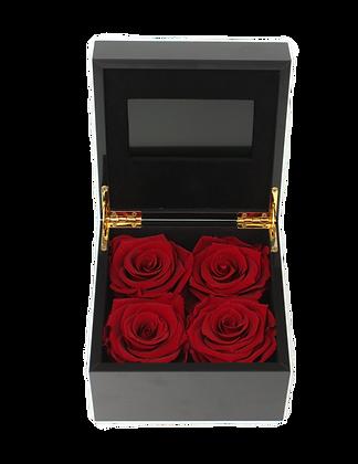 Luxury VIDEO Flowerbox S