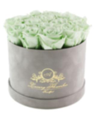 Velvet Size Grey XL (Mint Infinity Rosen