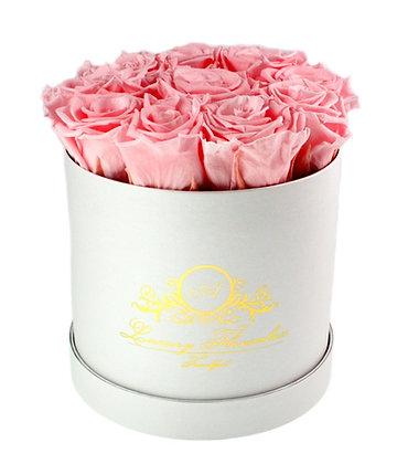 Plain Flowerbox White M