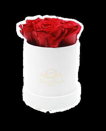 Velvet Flowerbox Weiß S
