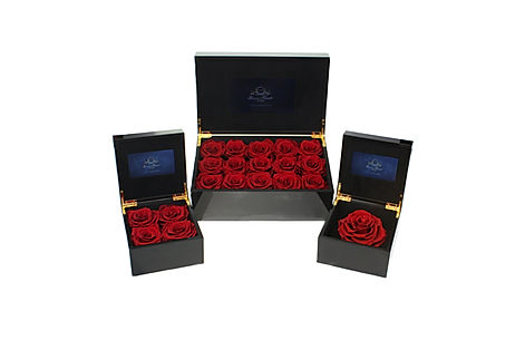 Luxury Video Flowerbox Kollektion.jpg