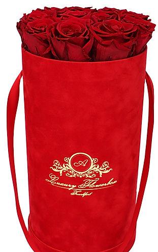 Glamour Red Velvet (Samt) Red.jpg