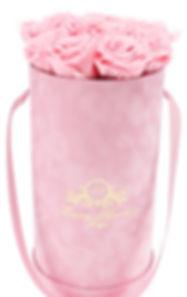 Glamour Rosé Light Pink.jpg
