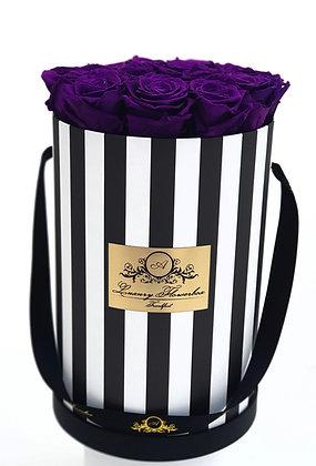 Glamour Flowerbox B&W XL
