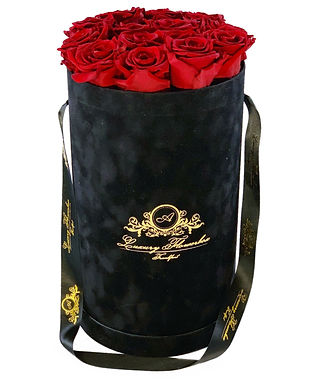 Glamour Collection Black Red.jpg