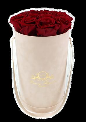 Glamour Velvet (Samt) Flowerbox Beige L