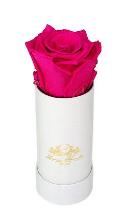 Mini Flowerbox Weiß