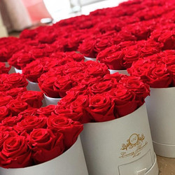 Schönen Sonntag! 🌹 #roterosen #rosenbox