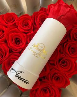 Rosen die für immer blühen !!!🌹♥️🌹♥️🌹
