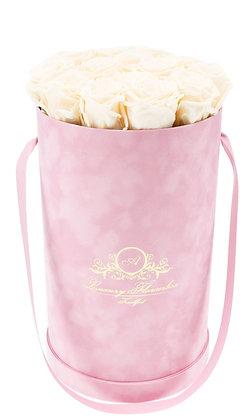 Glamour Velvet (Samt) Flowerbox Rosé L