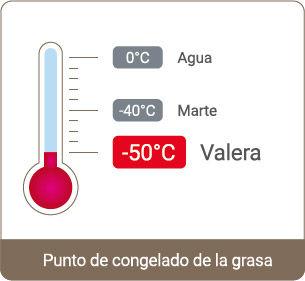 Valera-05.jpg