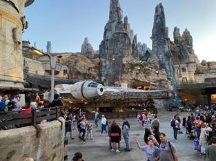 Top 25 Walt Disney World Attractions