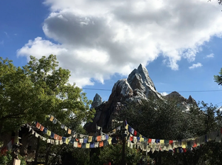 Disney World Coasters and Water Thrill Rides - Ranked!