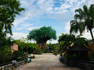 The Theme Park Adventure Guide