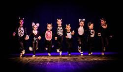 Butterflies & Pre Primary Ballet