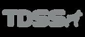Logo-TDSS.png