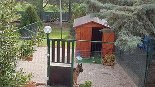 Soluzione Chalet a Zampa5stelle Dog Hotel | Pensione per cani Palermo