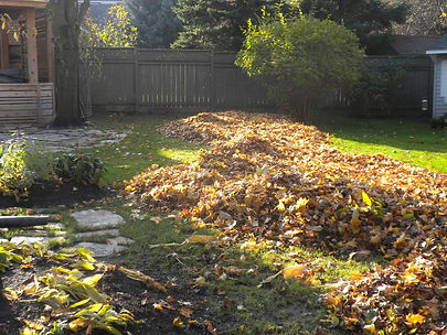 Fall Maintainance Kitchener Waterloo
