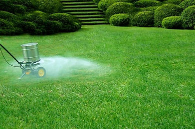 Lawn maintainance Fertilizer Kitchener Waterloo